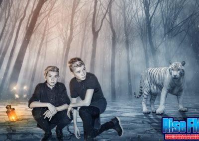 Marcus & Martinus - Ice Tiger